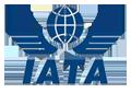http://travelsaver.com.ph/wp-content/uploads/2016/01/iata-logo.png